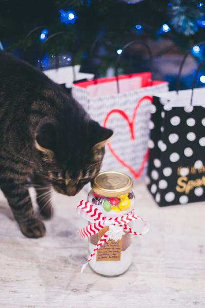 Idée cadeau de Noël DIY : le Kit SOS Cookies