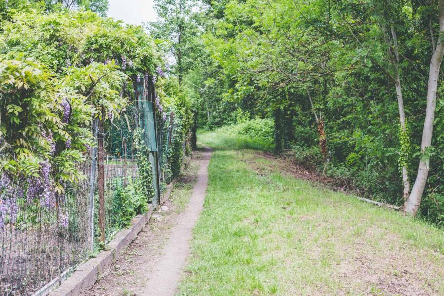 comment avoir un jardin a strasbourg