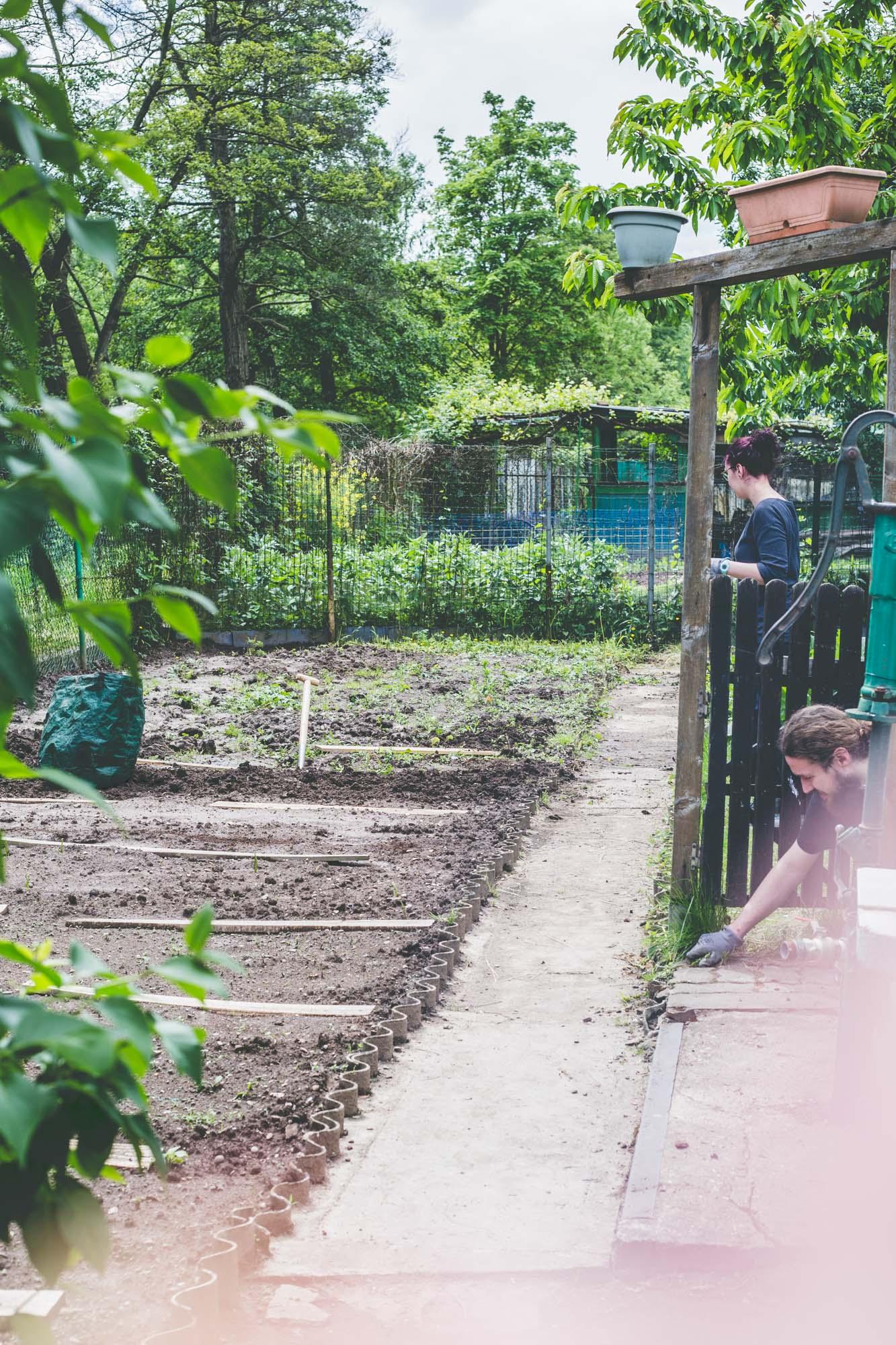 jardiner pour les nuls